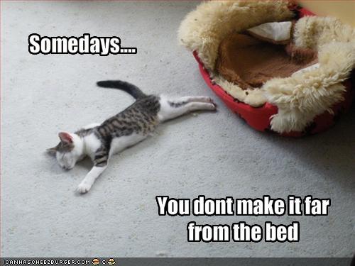 It's Monday..