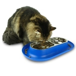 Cat eating from Hepper NomNom cat bowl photo