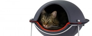 sleeping in Hepper Pod cat bed
