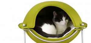 Green Hepper Pod Cat Bed