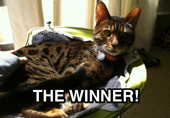 Pinterest Contest Winner