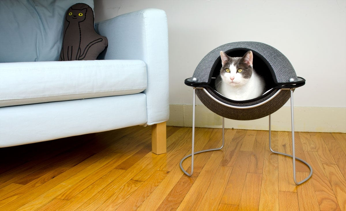 Hepper in her Pod bed. Modern Cat Furniture by Hepper  Cat Bed  Cat Scratching Post  Cat Bowl