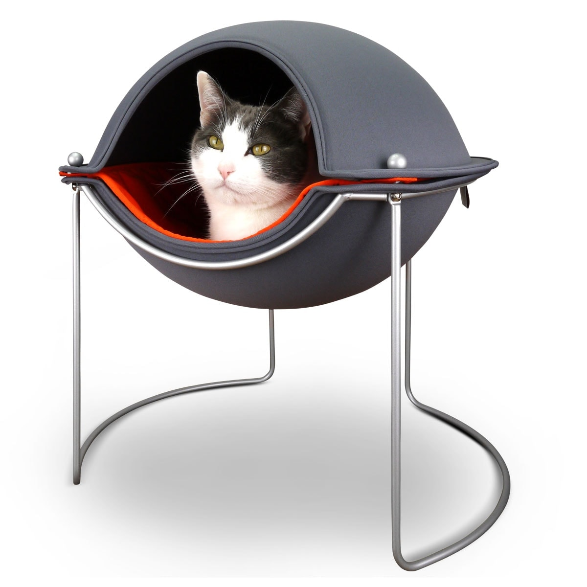 Hepper in her Pod cat bed