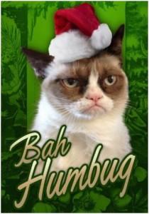 grumpy cat hates xmas