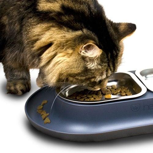 NomNom cat bowl keeps floor clean