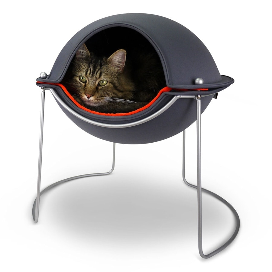 Hudson in his Pod cat bed