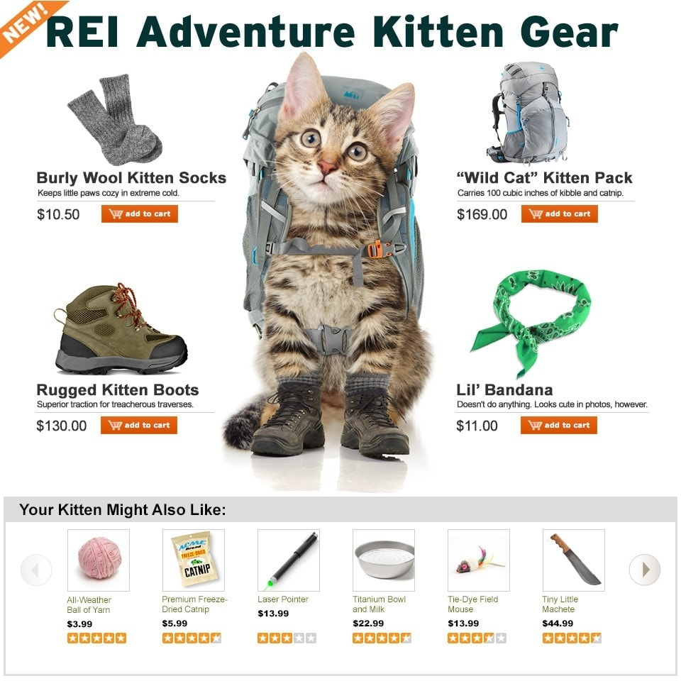 Adventure Kitten and Other Fool Stories