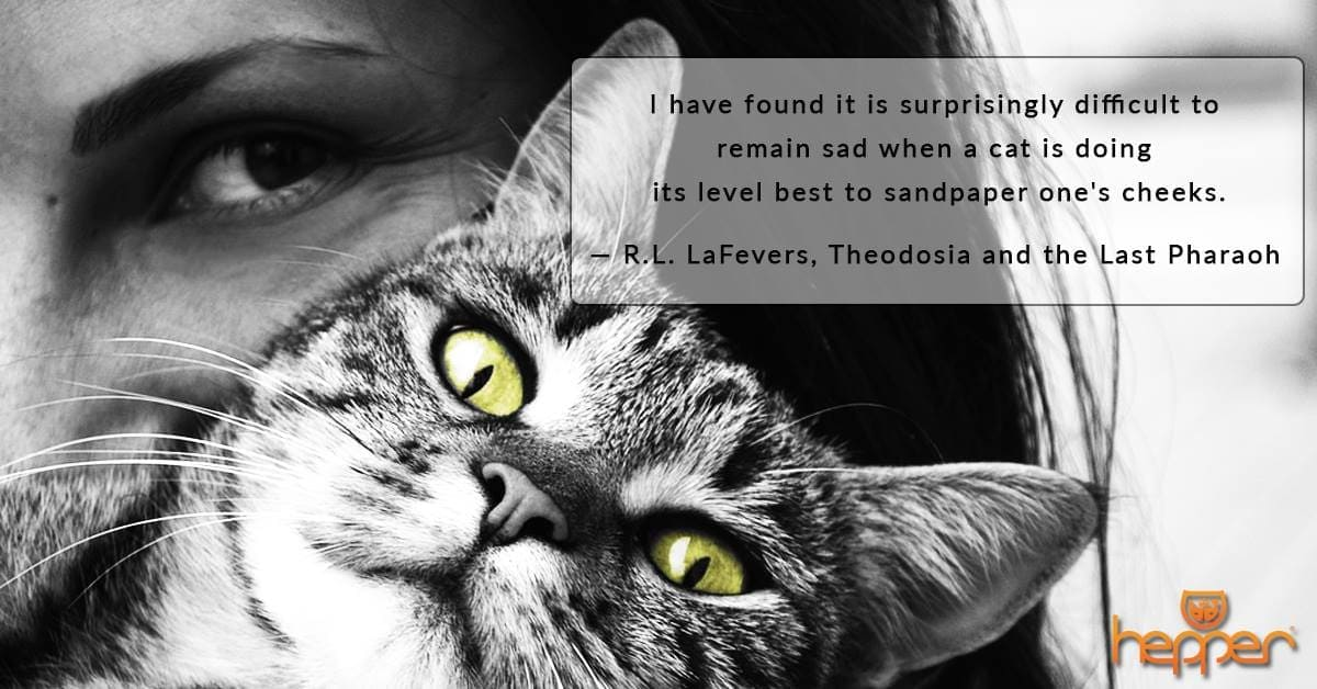 Best Cat Quotes – R. L. LaFevers