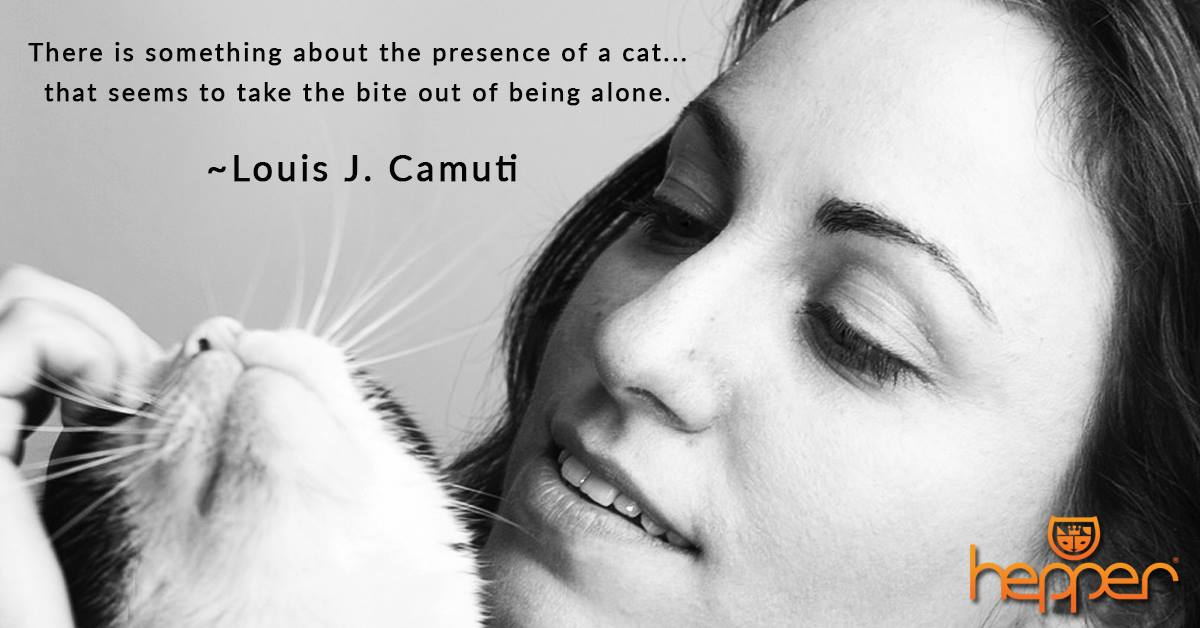 Best Cat Quotes – Louis J. Camuti