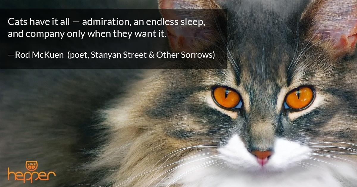 Best Cat Quotes – Rod McKuen