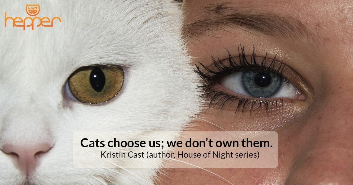 Best Cat Quotes – Kristin Cast
