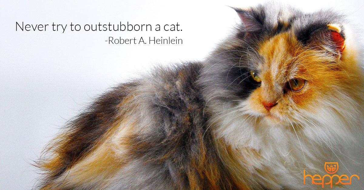 Best Cats Quotes – Robert Heinlein