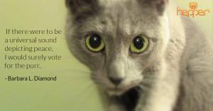 Best Cats Quotes – Barbara Diamond