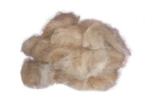 Cat hair fur ball