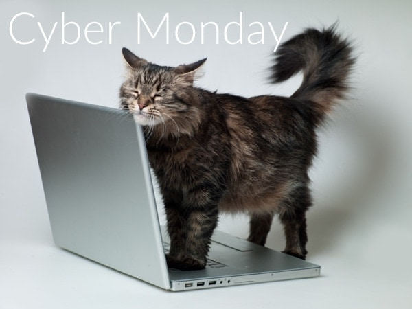 Cyber Monday Pet Product Deals for Cats and Dogs 2017