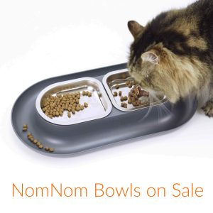 cat eating from hepper nomnom modern pet bowl