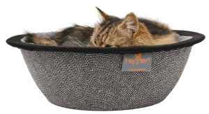 hudson in his hepper nest cat bowl bed