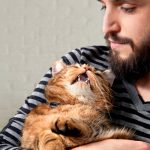 Why Cats Meow: Unlocking the Secrets of Cat Language