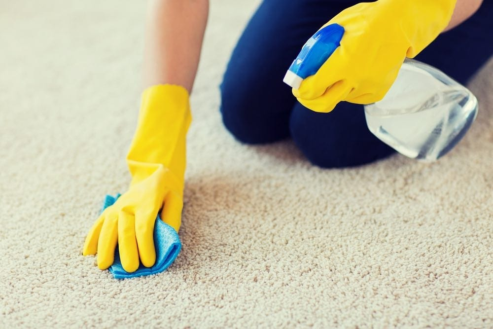 cleaning floor carpet with spray rubber gloves