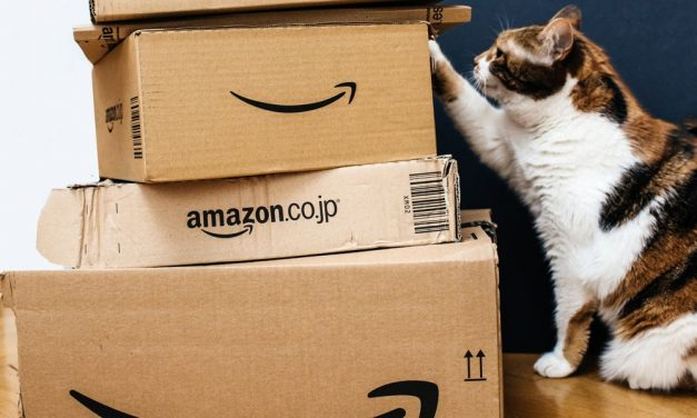Amazon Prime Day 2018 – Deals For Cats