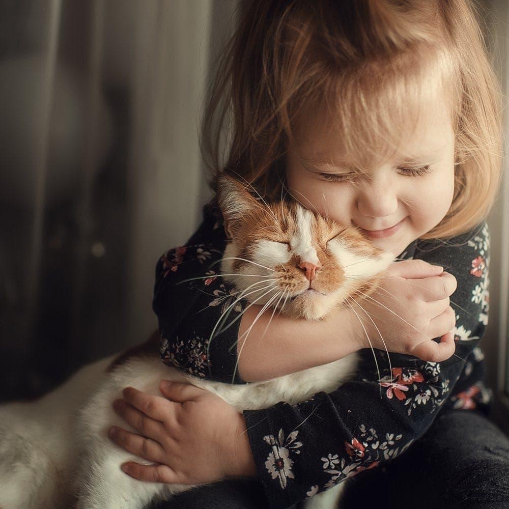 cute little girl snuggling cute cat