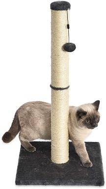 9Amazon Basics Medium Cat Scratching Post