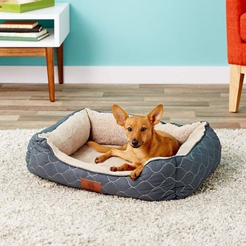 American Kennel Club Circle Stitch Orthopedic Bolster Cat & Dog Bed