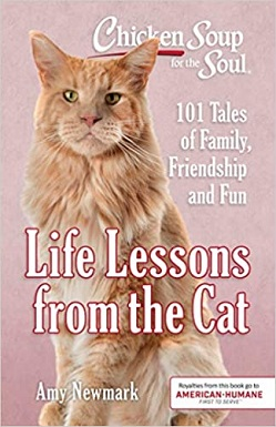 Chicken Soup for the Soul - Life Lessons from the Cat