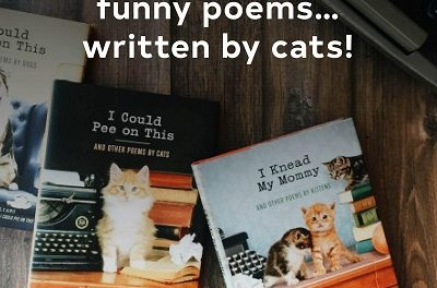 10 Best Books For Cat Lovers in 2021 – Reviews & Top Picks