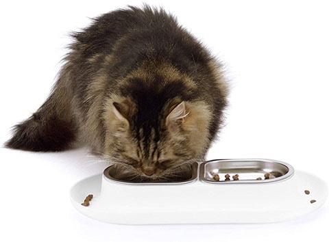 Hepper Nomnom Modern Cat Bowl