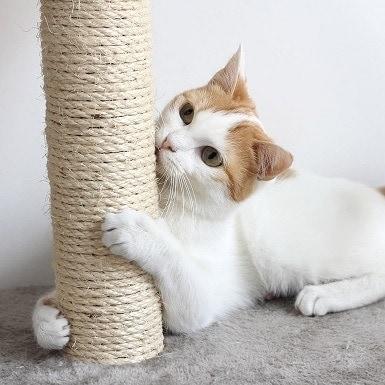 PETMAKER Store cat scratcher
