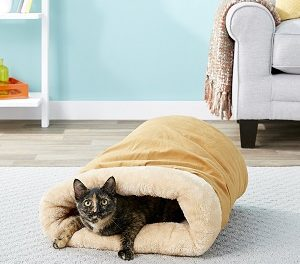 10 Best Cat Cave Beds in 2021 — Reviews & Top Picks
