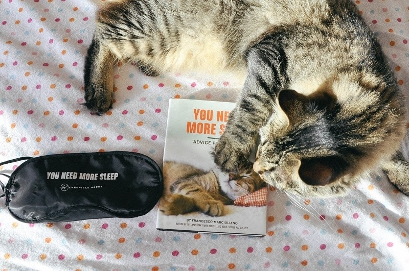 You Need More Sleep Advice from Cats (Cat Book, Funny Cat Book, Cat Gifts for Cat Lovers) - Image 1