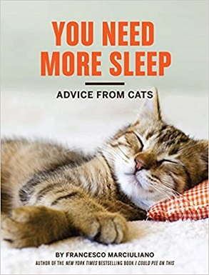 You Need More Sleep - Advice from Cats