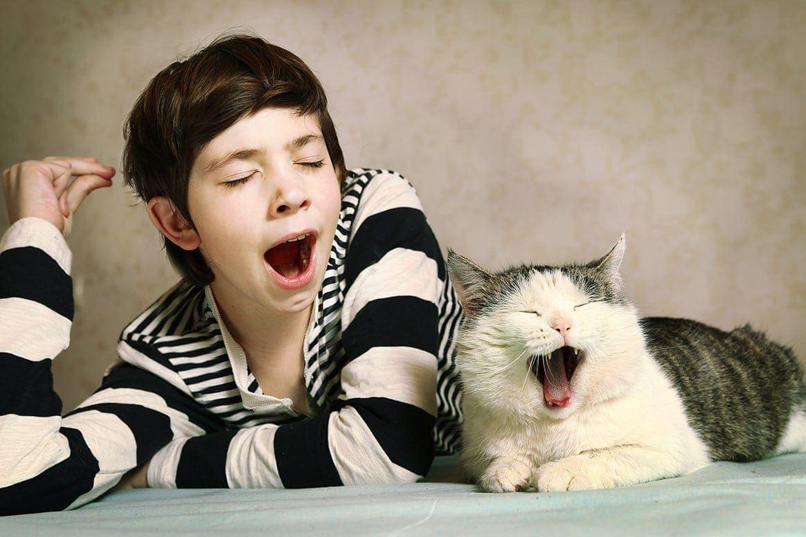 boy and cat yawns