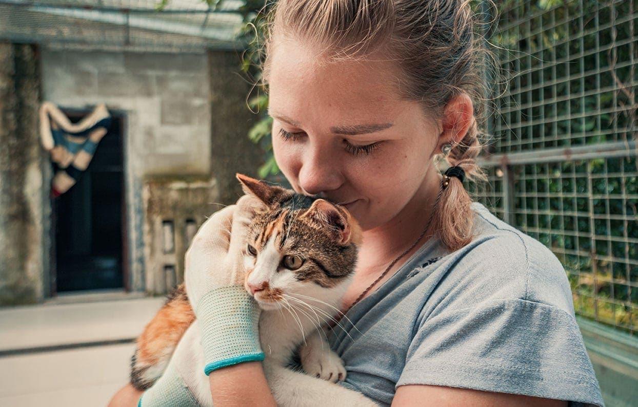 cat and female volunteer