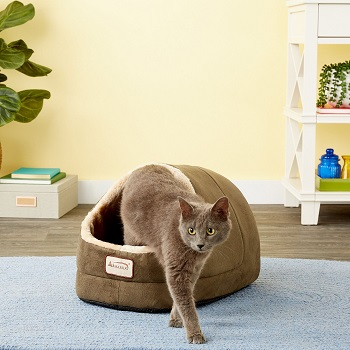 10 Best Cat Beds for Kittens in 2021 – Reviews & Top Picks