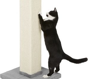 8 Best Tall Cat Scratching Posts in 2021 – Reviews & Top Picks