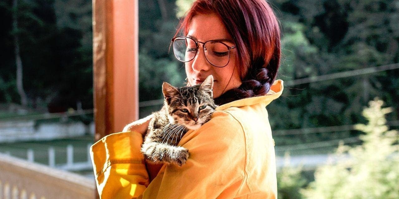 12 Similarities Between Your Cat and a Teenager
