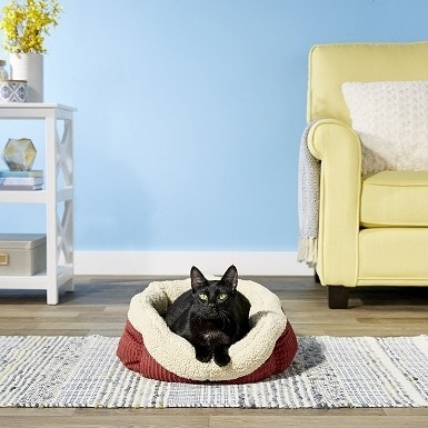 1Aspen Pet Self-Warming Bolster Cat & Dog Bed