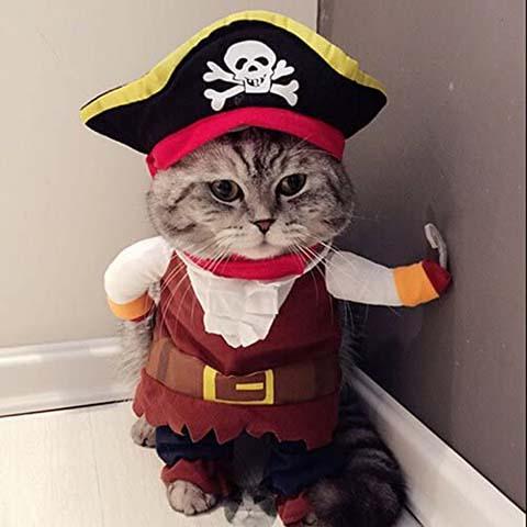 Idepet Pet Clothes Pirate Cat Costume