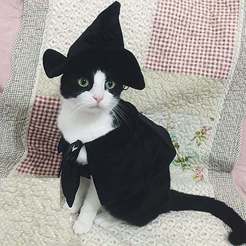 Lanyar Hooded Cloak Witch Cat Costume