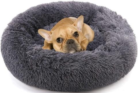 NOYAL warming cat bed_Amazon