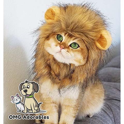 OMG Adorables Lion Costume for Cat