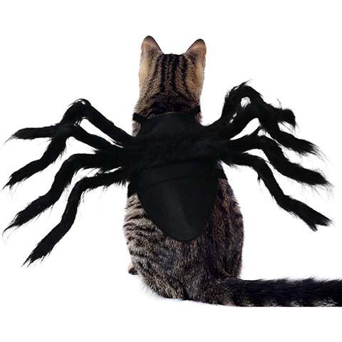 RYPET Pet Spider Costume