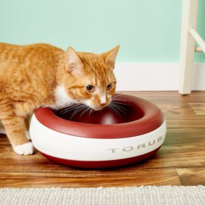 cat and Torus Filtered Dog & Cat Water Bowl