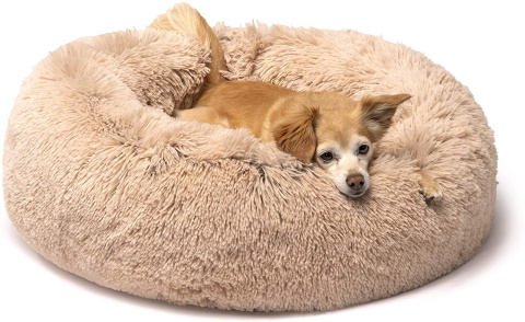 friends forever cat bed_Amazon