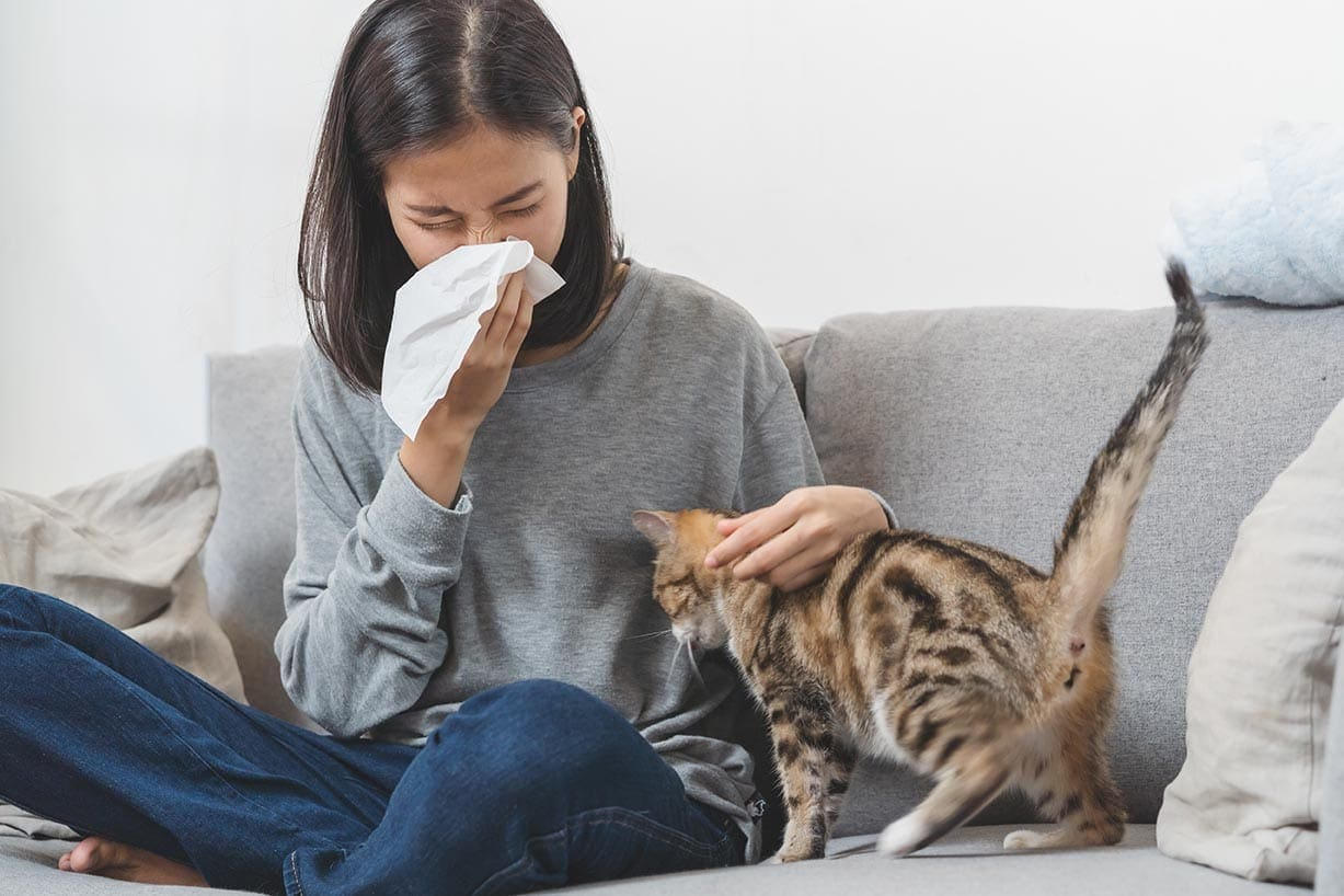 woman sneezing while holding a cat