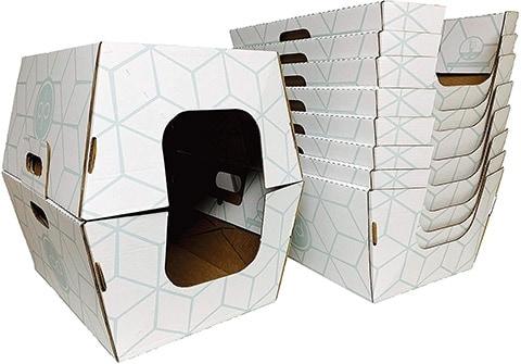 Cats Desire Disposable Litter Boxes