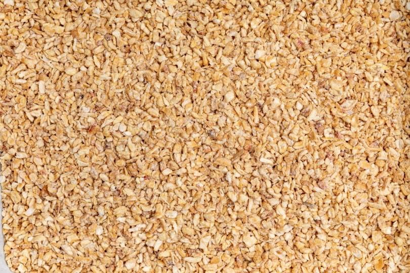 Corn cat litter_Nynke van Holten_Shutterstock
